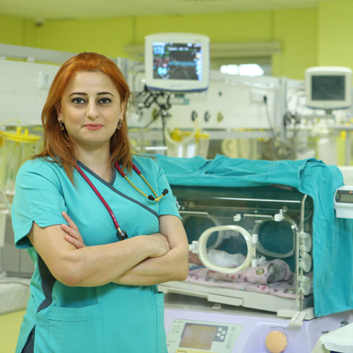 Dr. Nərgiz Məmmədova